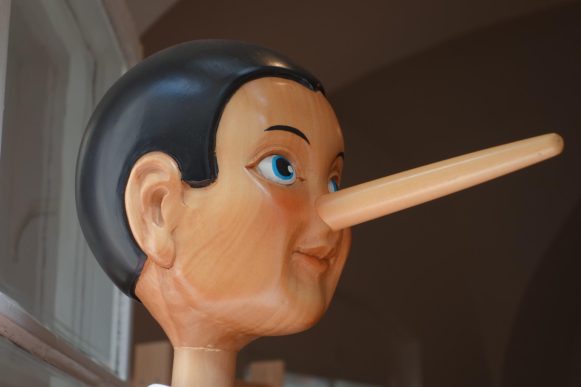 거짓말 하는 아이, 이유있는 거짓말
