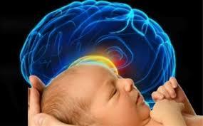 두뇌 많이 쓰는 아이, 체중 감소한다