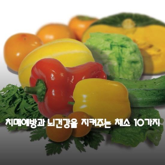 치매예방과 뇌건강을 지켜주는 채소 10가지