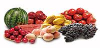 요즘처럼 더운 여름날 땡기는 과일은 뭐가 있을까요?