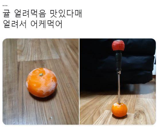 귤 얼려먹음 맛있다매...