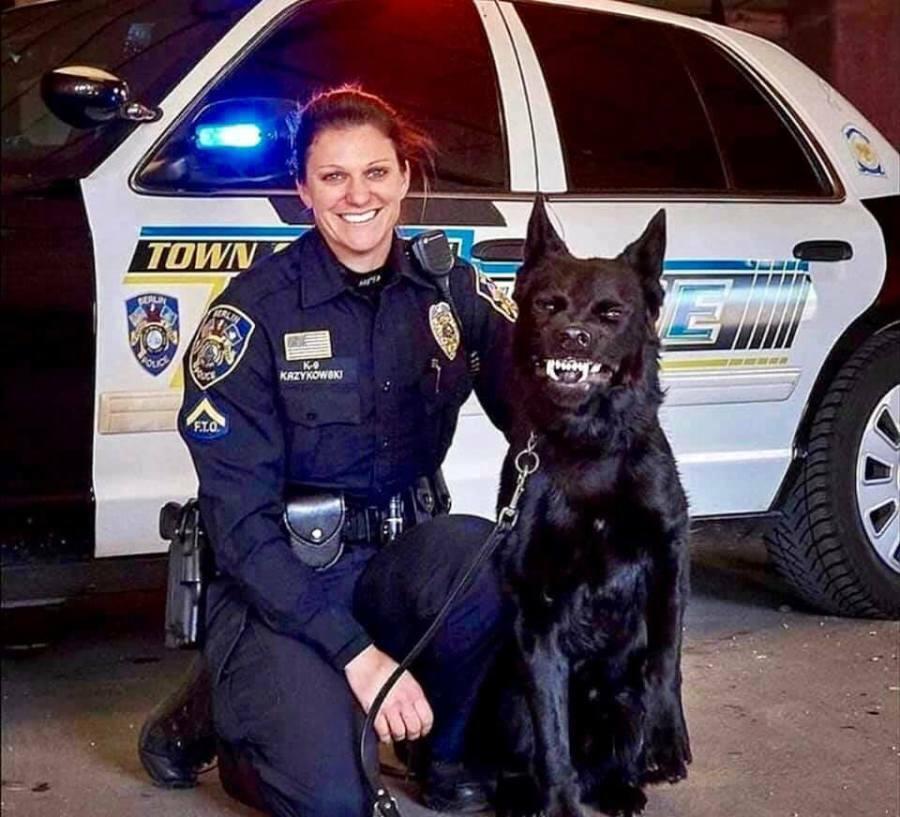 외모 하나로 특채된 경찰견