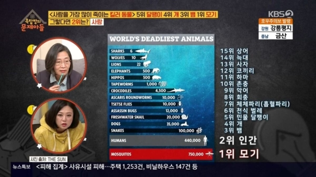 연간 사망자수 기준, 사람을 가장 많이 죽이는 동물