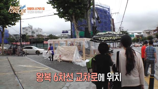 서울 한복판 횡단보도 앞에 집 짓고 사는 아줌마