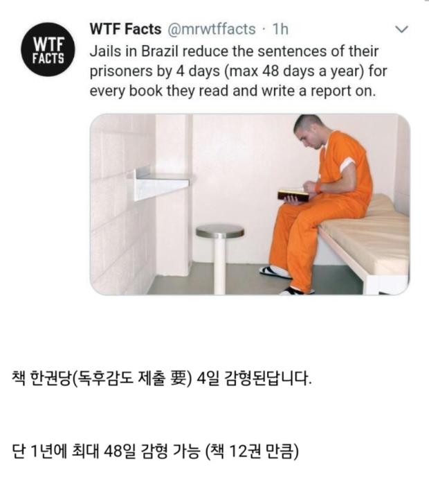 브라질에서 감형 받는 방법