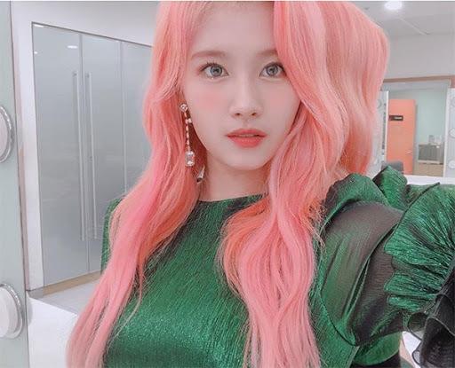 핑크머리 사나