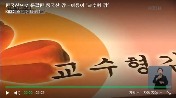 한국산으로 위장한 중국산 교수형 감
