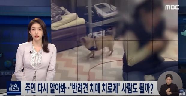 개 치매 치료제 개발에 성공한 한국 연구진