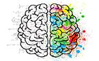 우리 뇌를 바보 로 만드는 습관들