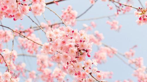 봄 맞이 집 정리하는 꿀팁 방출!!