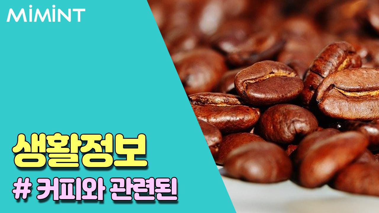 커피에 대한 정보들