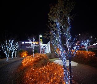 빛으로 수놓은 동춘당공원에서 겨울밤 낭만산책 즐겨요!