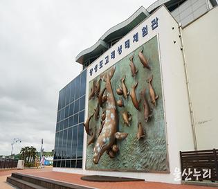 우리나라 최초 돌고래 수족관, 고래생태체험관