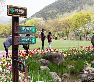 전국최초, 쓰레기 매립장이 친환경 생태공원으로! - 대구수목원