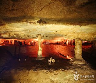 동해 천곡황금박쥐동굴