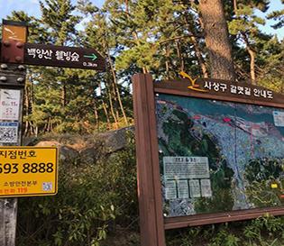 백양산 웰빙숲