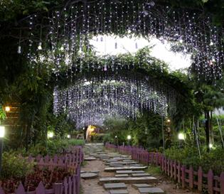 유니스의 정원