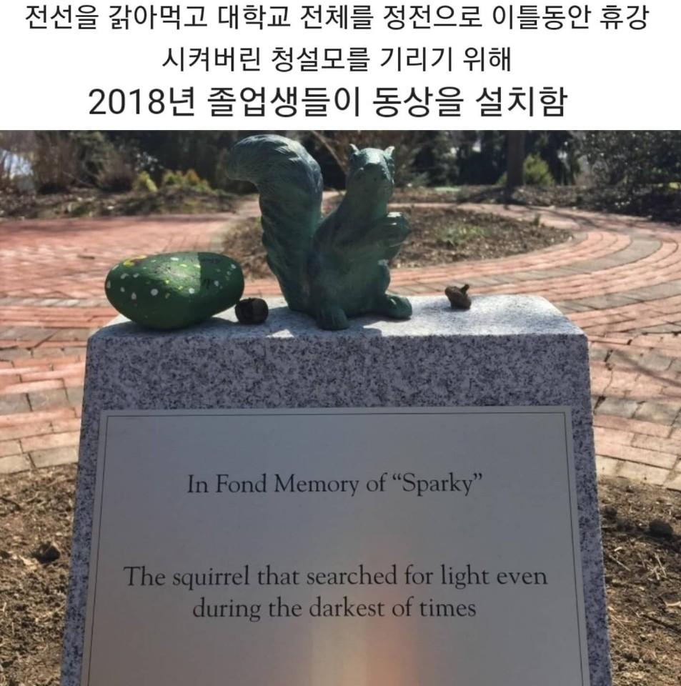 대학교에 청설모 동상이 있는 이유