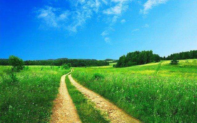 길은 있다가도 없고, 없다가도 생긴다.